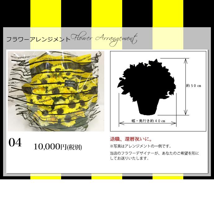 タイガースアレンジ10000円