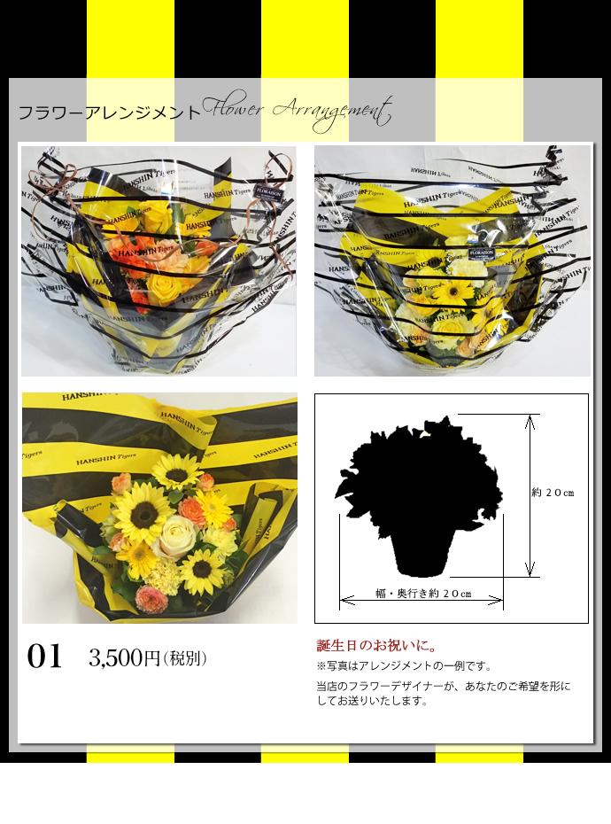 タイガースアレンジ3500円