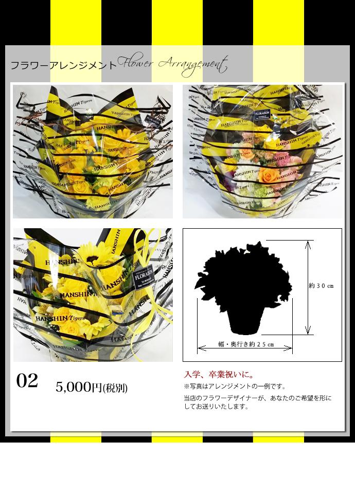 タイガースアレンジ5000 円