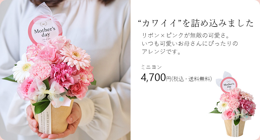 キュートアレンジ・ミニヨン