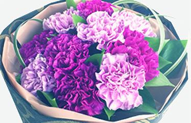 ムーンダストの花言葉は永遠の幸福