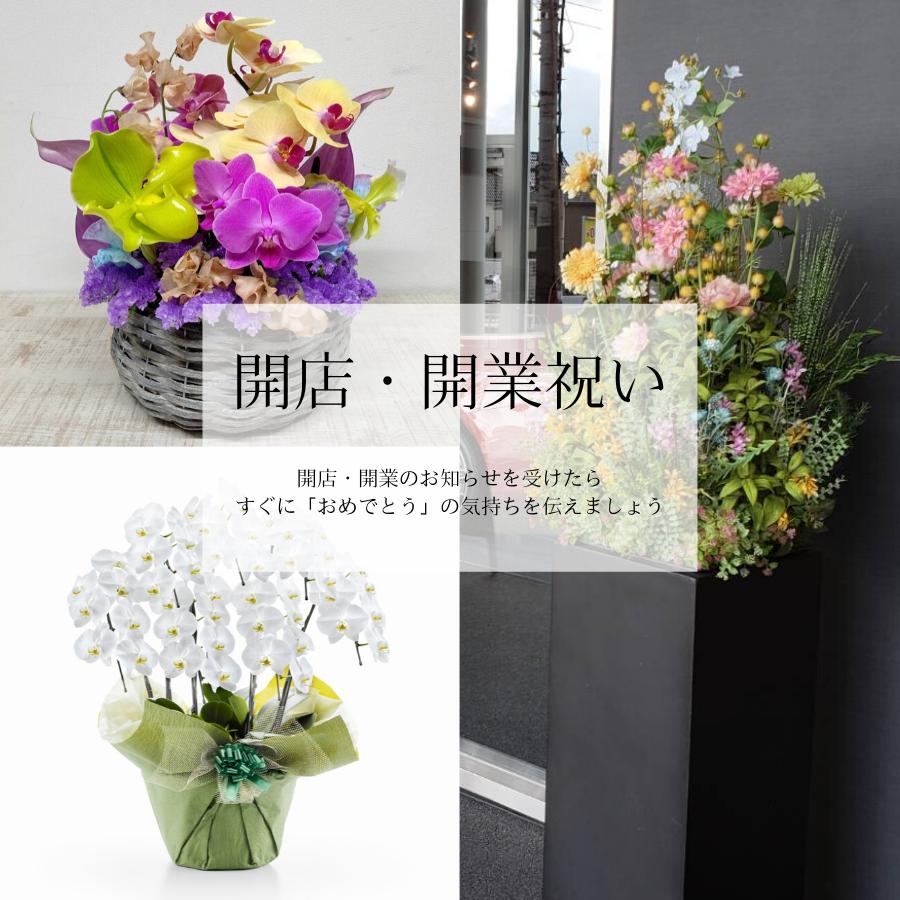 新鮮なお花