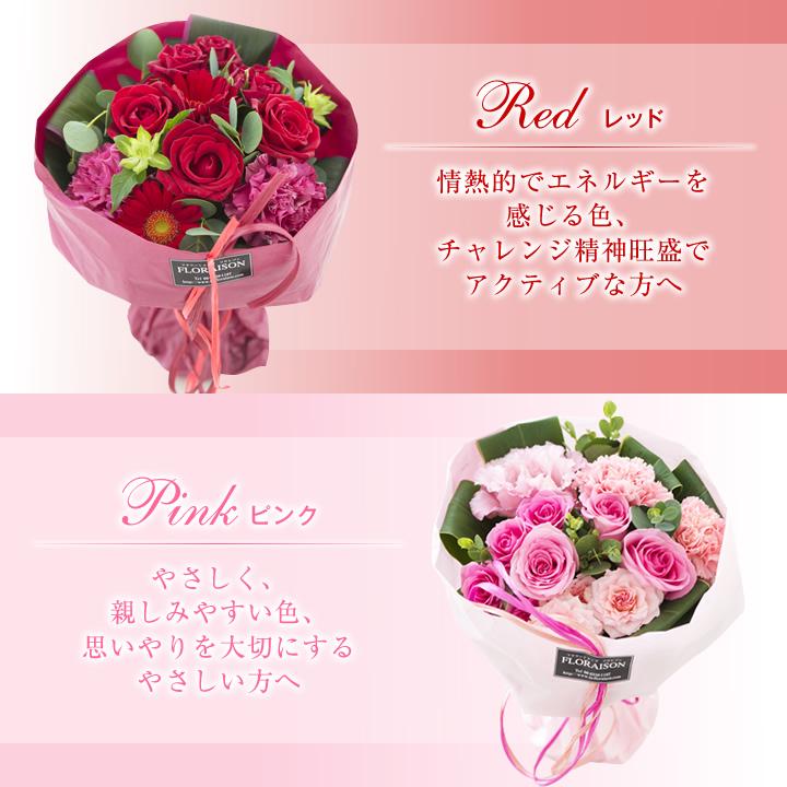 SB レッド、ピンクの紹介