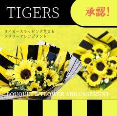 阪神タイガースカテゴリ